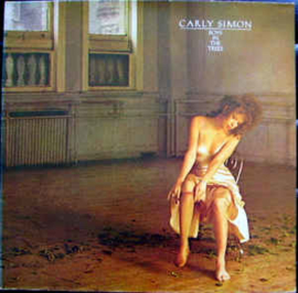 Carly Simon ‎– Boys In The Trees