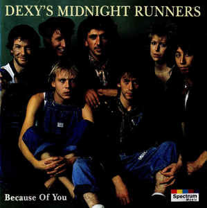 Dexys Midnight Runners – Because Of You (CD)