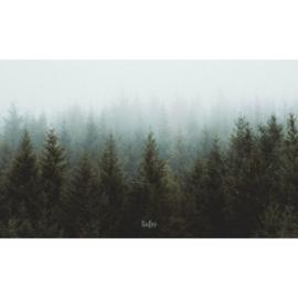 Binnenposter - Bomen - Groen (15 x 25 CM)