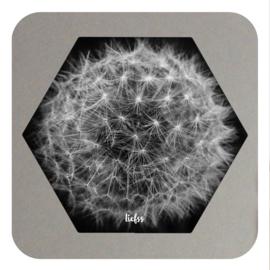 Hexagon - dandelion
