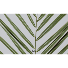 Binnenposter - Graspalm - Groen (15 x 25 CM)