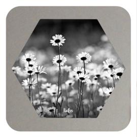 Hexagon - daisy