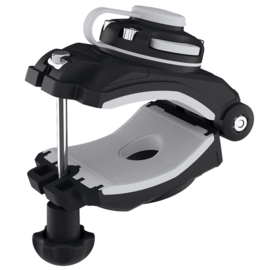 Mount and mounting clip