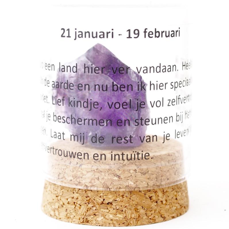 Kids: 21 january - 19 february