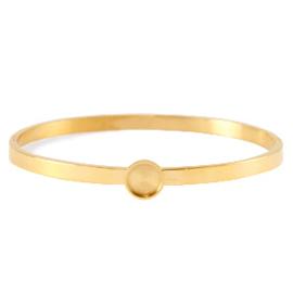 RVS Bangle Diamant - Goud