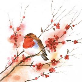 Servet Birdy Robin - 5 stuks