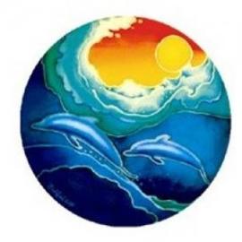 Raamsticker dubbelzijdig - zon en dolfijnen - D11842