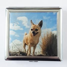 Sigarettenkoker metaal hondje met blauwe lucht - D11195