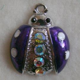 Bedel lieveheersbeest paars - S10283