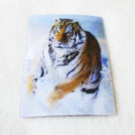3d Koelkastmagneet tijger - D11792