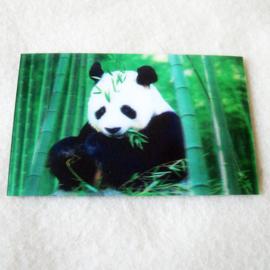 3d Koelkastmagneet panda - D11793