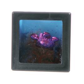 Spaarpot schildpad - D10891a