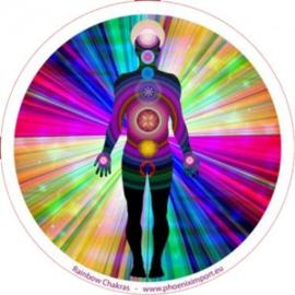 Raamsticker enkelzijdig - Rainbow Chakras - D11111