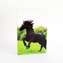 Sigarettendoosje wit met zwart paard - 111876