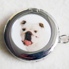 Tashaak hondje met spiegel - D10284
