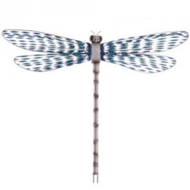 Wandversiering Libelle blauw - D11474