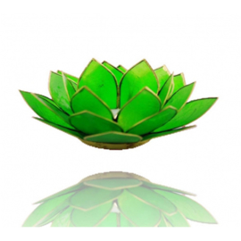 Sfeerlicht Chakra (4) Lotus groen - O10503