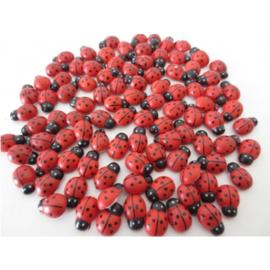 Lieveheerstbeestje klein - D12952