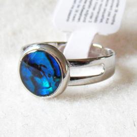 Paua shell ring rond, verstelbaar - S11015