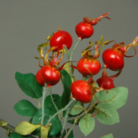Rose Hip Spray x3 58cm