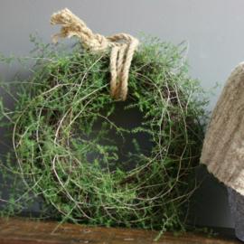 Stoere en sobere Asparagus krans ( 40cm / 45cm drsn. ) met touw