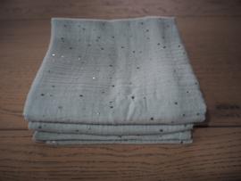 Hydrofieldoek Mint & silver dots Maat L