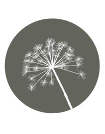 Muurcirkel olijfgroen met berenklauw -40cm