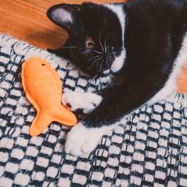 Beco Pets - Kattenspeeltjes met Kattenkruid: Vis,- Zeer Sterk en Milieuvriendelijk