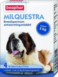 Milquestra Hond 5kg tot 75kg 4 tabl.