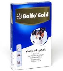 Bolfo gold 100 2 pipetten
