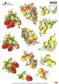 Studio Martare - fruit - CD10383