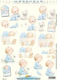 Doe Maar - Morehead - Baby Boy 11052-192
