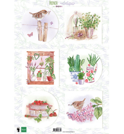 MD French antiques herbs EWK1273