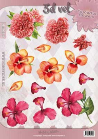 3D vel Bloemen Hobbyidee Colourful flowers HI-0128