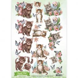 3D Knipvel - Amy Design - Sweet Pet- Cats CD10961