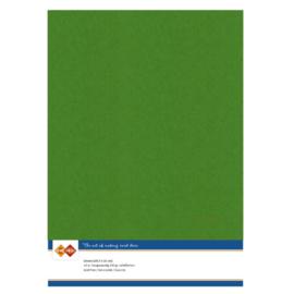 Linen Cardstock - A4 - Fern Green LKK-A460