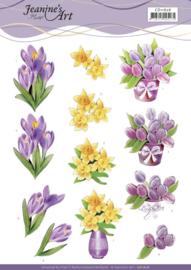 3D Cutting Sheet - Jeanine's Art - Spring Flowers CD11626