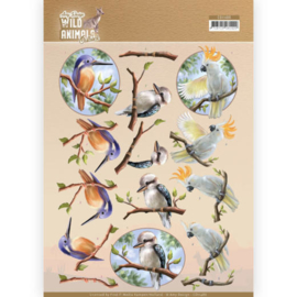 3D Cutting sheet - Amy Design - Wild Animals Outback - Parrot CD11486