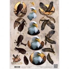 3D Knipvel - Amy Design - Wild Animals - Eagles CD10867