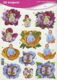 3D A4 Knipvel Baby in bloem VBK2529