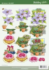 3D vel Leeftijden Hobbyidee 000-3Dvel_HI-0057