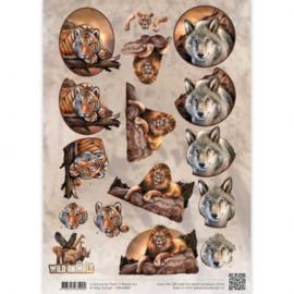 3D Knipvel - Amy Design - Wild Animals - Big Five 1 CD10866