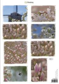 CraftEmotions Knipvellen voorjaarsbloemen 2 roze 117140/1002