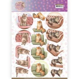 3D Knipvel - Amy Design - Cats World - Show Cats CD11370
