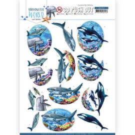 3D Push Out - Amy Design - Underwater World - Big Ocean Animals SB10457