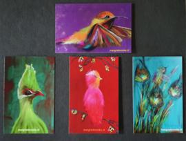 Set cadeau kaartjes (4 stuks)