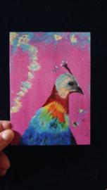 Ansichtkaart Ms. Peacock