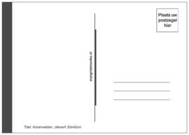 Ansichtkaart Korenvelden