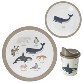 SEBRA KINDERSERVIES ARTIC ANIMALS SET