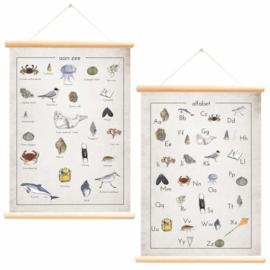 LITTLE & PURE | Schoolplaat Aan zee alfabet - Jasper de Ruiter